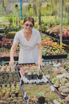 Vrouw succulent planten in kleine huistuin