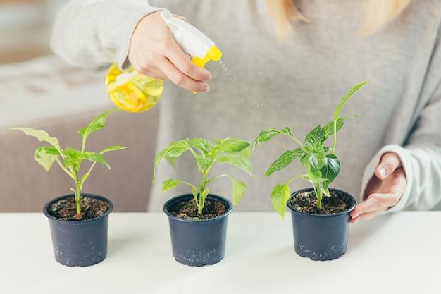 Vrouw thuis zorgt voor bloempotten