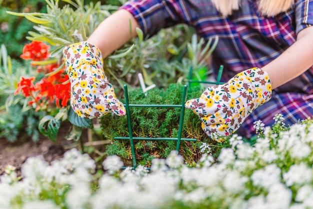 Vrouw tuinieren. tuinman die haar planten in een tuin verzorgt