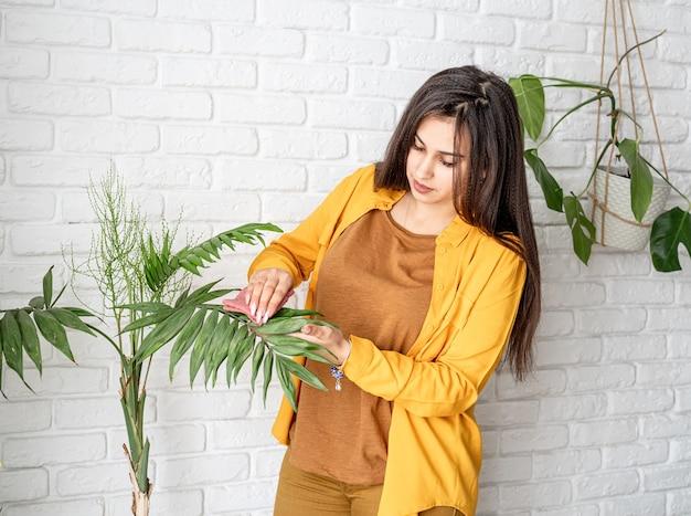 Vrouw tuinman het verzorgen van haar huis tuinplanten