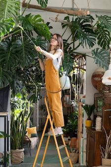 Vrouw tuinman in overall die zorgt voor weelderige monstera kamerplant in gezellige huistuin home