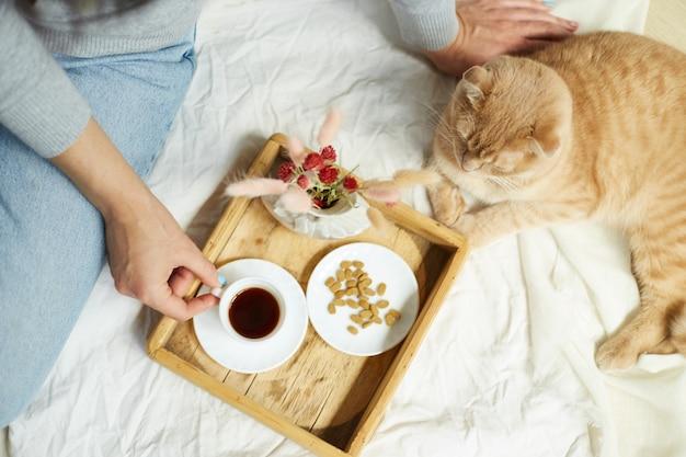 Vrouw zittend op het bed en koffie drinken, katten voeren