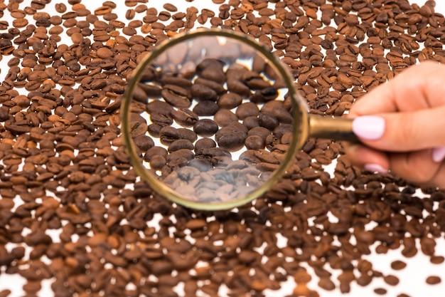 Vrouwelijk hand keepig vergrootglas over de koffiebonen