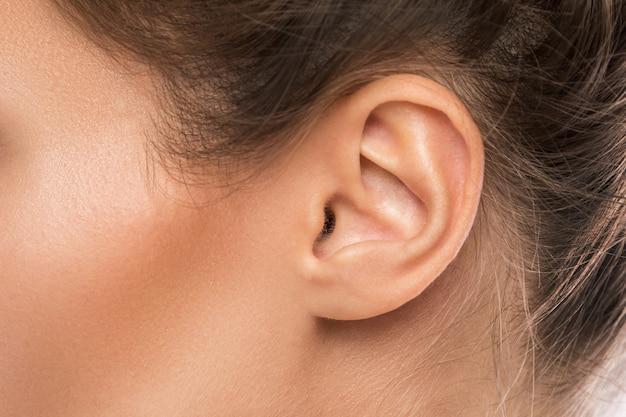 Vrouwelijk oor