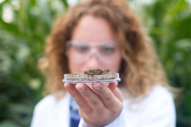 Vrouwelijke agronoom specialist onderzoekt bodemmonster voor landbouw