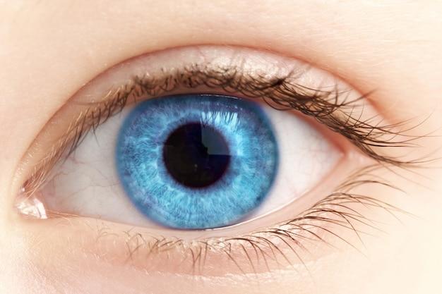 Vrouwelijke blauwe oogclose-up