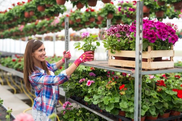 Vrouwelijke bloemist die in bloemenwinkel werkt