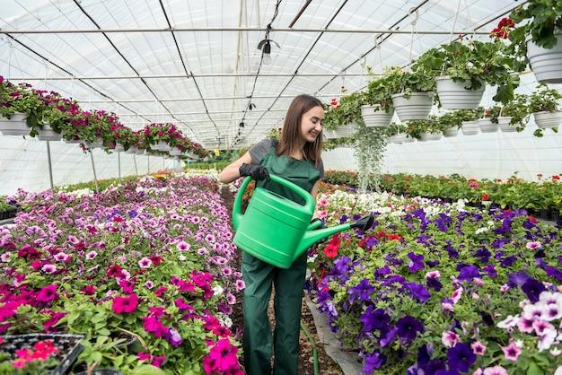 Vrouwelijke bloemist die verschillende bloemen in serre water geeft. levensstijl. schoonheid in de natuur