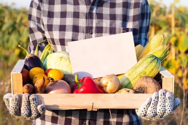 Vrouwelijke boer bedrijf doos vol natuurlijke biologische groenten buitenshuis. vrouw met verse groenten en leeg teken op hen in landbouwgebied.