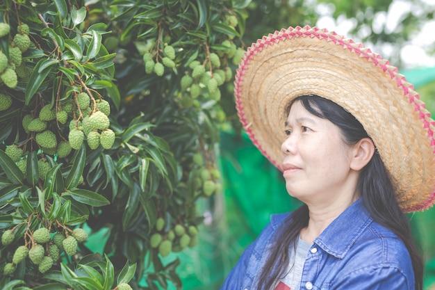Vrouwelijke boeren controleren lychee in de tuin.