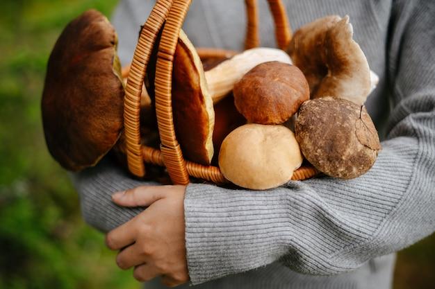 Vrouwelijke boswachter houdt rieten mand vol mooie eetbare paddenstoelen in haar handen biologisch voedsel