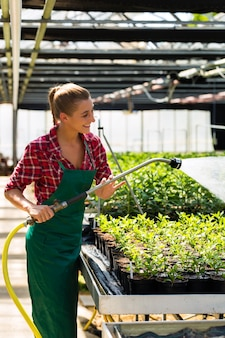 Vrouwelijke commerciële tuinman planten water geven