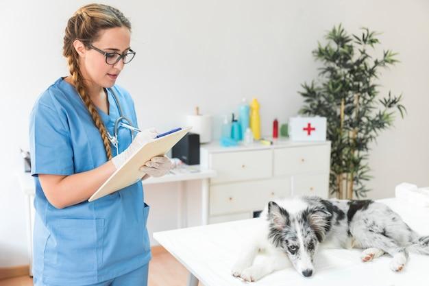 Vrouwelijke dierenarts die op klembord met hond op lijst in de kliniek schrijven