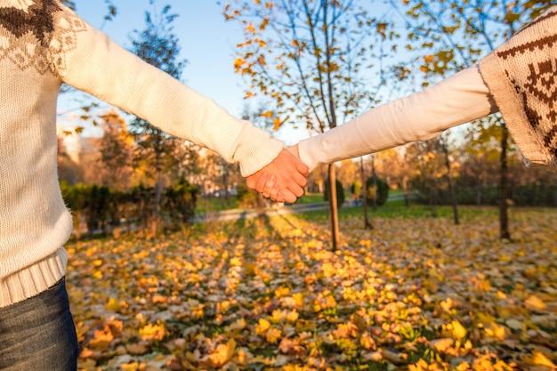 Vrouwelijke en mannelijke hand in het park