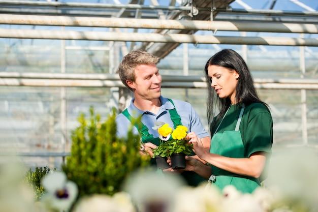 Vrouwelijke en mannelijke tuinman in markttuin