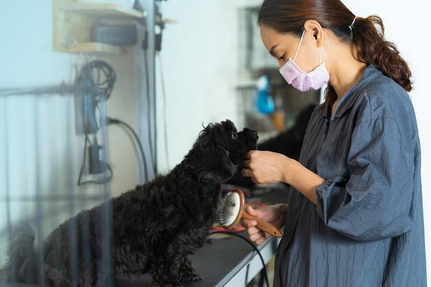 Vrouwelijke groomer op het werk houdt een borstel voor huisdieren die wol in de schoonheidssalon voor honden borstelen