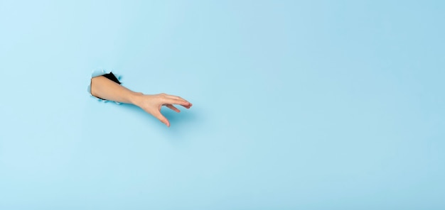 Vrouwelijke hand gebaren reiken vangen iets op blauwe banner achtergrond. panoramisch beeld