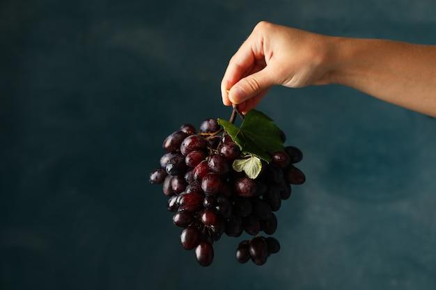 Vrouwelijke hand houdt rijpe druif op blauw