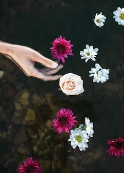 Vrouwelijke hand in water met drijvende bloemen in een meer.