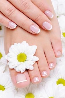 Vrouwelijke hand met mooie franse manicure op de zuivere en schone voet