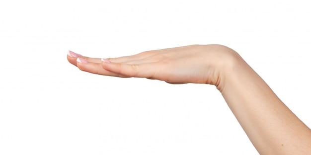 Vrouwelijke hand met palm die neer op wit wordt geïsoleerd