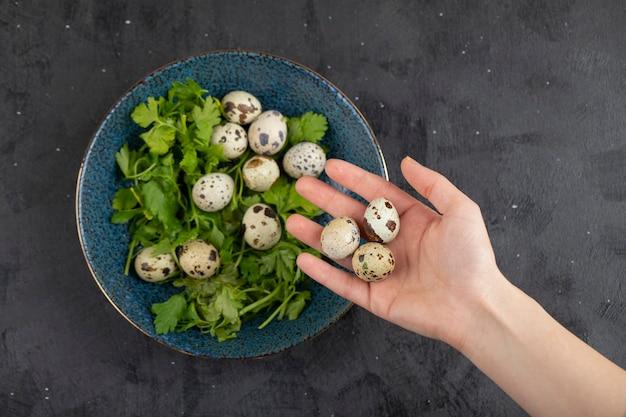 Vrouwelijke hand met rauw kwartel ei op zwarte ondergrond.