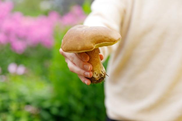 Vrouwelijke hand met rauwe eetbare paddenstoel met bruine pet penny bun in herfst bos achtergrond oogst...