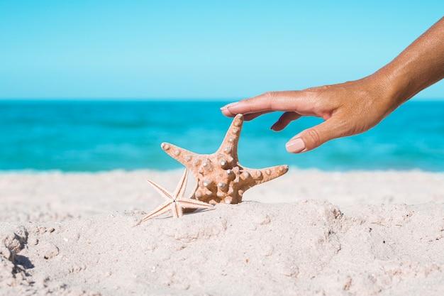Vrouwelijke hand raakt zeester op een zandstrand. tropische natuur.