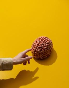 Vrouwelijke hand wijst vinger naar hersenen op geel oppervlak