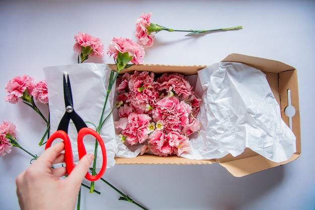Vrouwelijke handen die dianthus in een geschenkdoos verpakken op witte muur