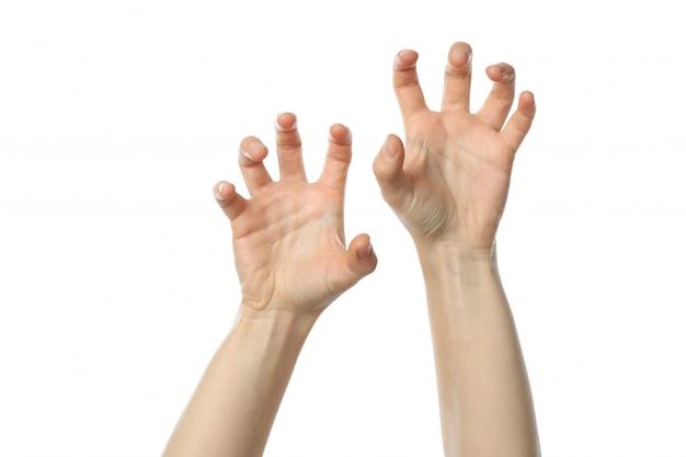 Vrouwelijke handen die op witte achtergrond worden geïsoleerd. gebaren