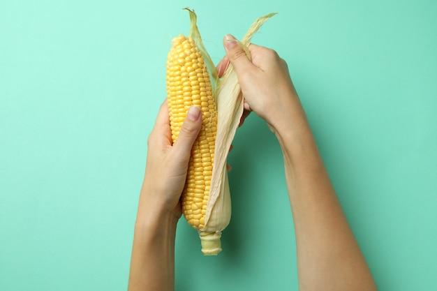 Vrouwelijke handen houden rauwe maïs op muntachtergrond