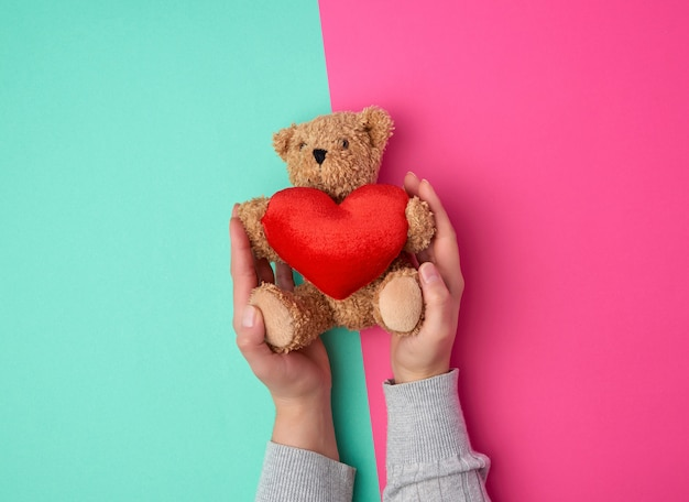 Vrouwelijke handen met een kleine speelgoed teddybeer
