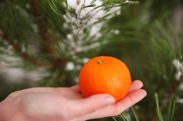 Vrouwelijke handen met een mandarijn op de achtergrond van de kerstboom