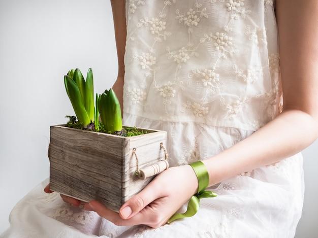 Vrouwelijke handen met jonge spruiten van hyacinten