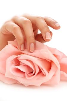 Vrouwelijke handen met roze roos. vrouwelijkheid concept