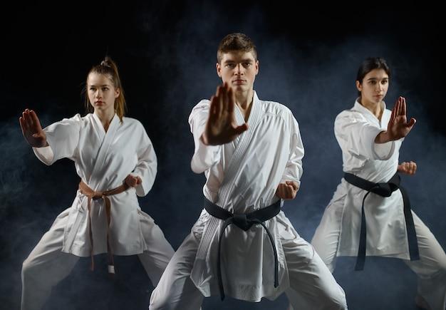 Vrouwelijke karatestrijders, training met meester in witte kimono. karatekas over training, vechtsporten, vechtwedstrijden