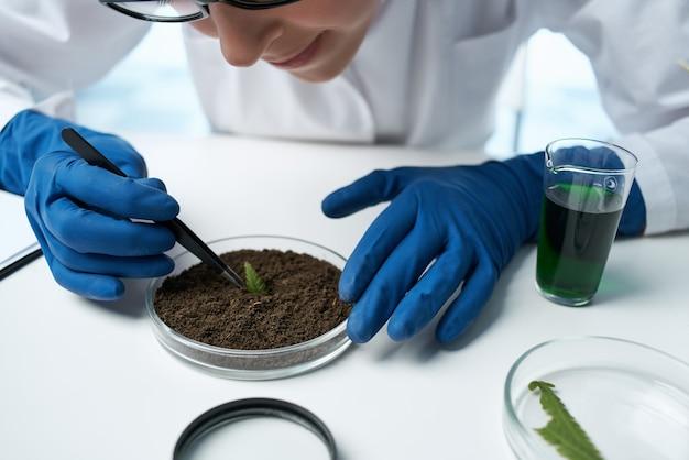 Vrouwelijke laboratoriumassistent biologie onderzoek planten biologie