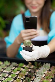 Vrouwelijke landbouwer draagt een schort met smartphone en neemt een foto van een kleine cactus in de hand met geluk. concept voor nieuwe normale hobby en online livestreamverkoop, thuiswerken.