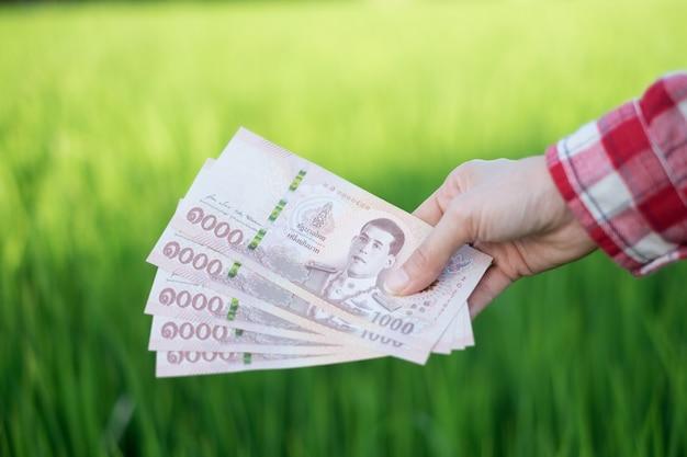 Vrouwelijke landbouwer in het geld van de padieveldholding