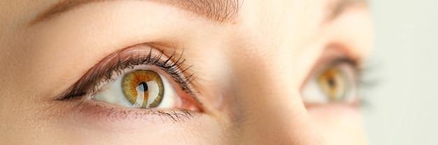 Vrouwelijke oranje groen gekleurde verbazingwekkende wijd geopende ogen