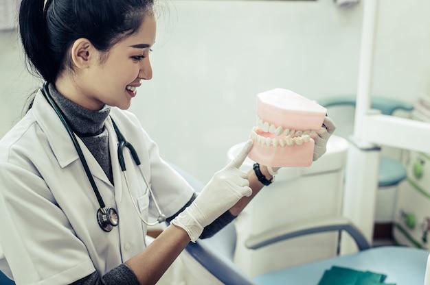 Vrouwelijke tandarts die kunsttanden verklaren aan patiënt in kliniek