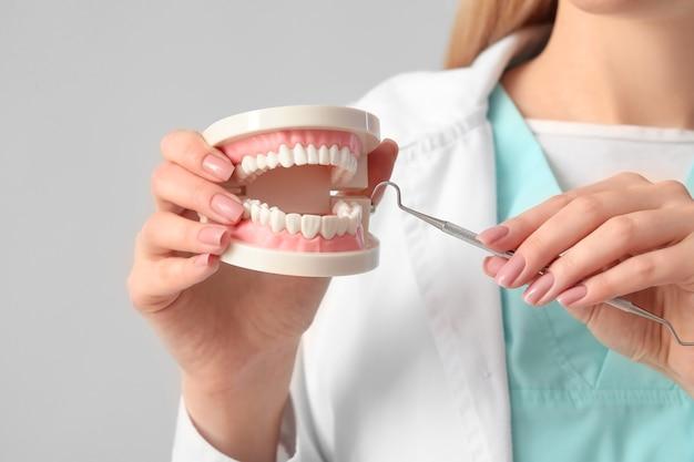 Vrouwelijke tandarts met plastic kaakmodel op lichte oppervlakte, close-up