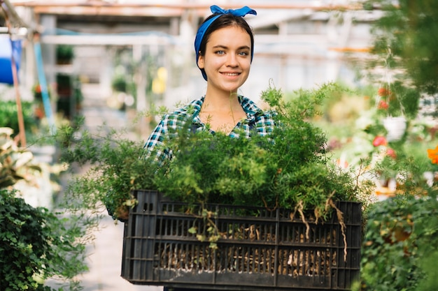 Vrouwelijke tuinman bedrijf krat met planten in de kas