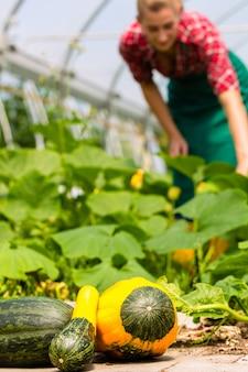 Vrouwelijke tuinman in markttuin of kinderdagverblijf