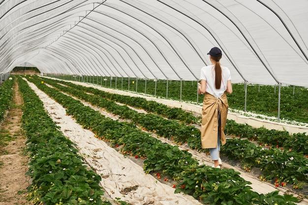 Vrouwelijke tuinman in schort die bij aardbeienaanplanting loopt