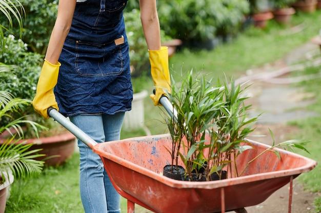 Vrouwelijke tuinman kruiwagen duwen