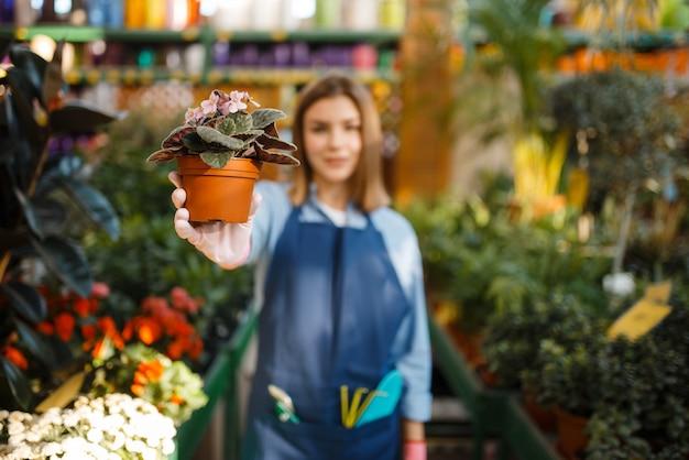 Vrouwelijke tuinman met bloemenwinkel en tuinspray voor tuinieren. vrouw verkoopt planten in bloemist winkel, verkoper