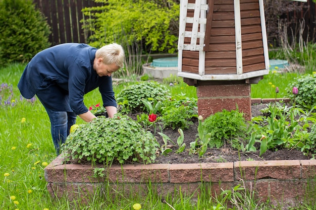 Vrouwelijke tuinman van middelbare leeftijd die bloemen plant op decoratief bloembed met windmolen temidden van groen landschap