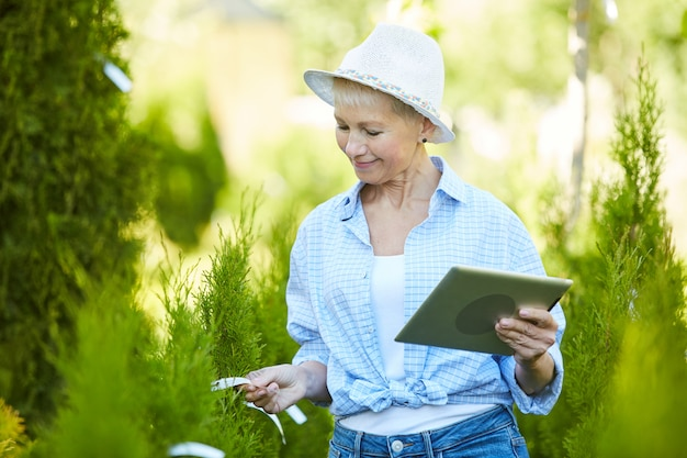 Vrouwelijke tuinman working at tree farm